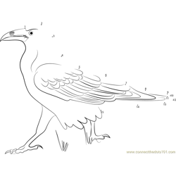 Raven Walking with Attitude Dot to Dot Worksheet