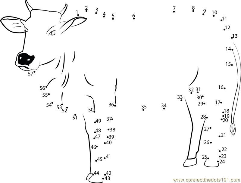 Sweet Cow Dot To Dot Printable Worksheet