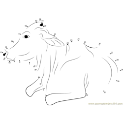 Sunbathing Cow Dot to Dot Worksheet