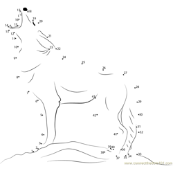 Coyote Howling Dot to Dot Worksheet