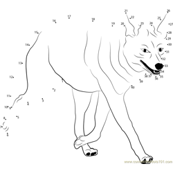 Coyote on the Run Dot to Dot Worksheet