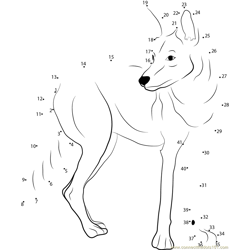 Western Coyote Dot to Dot Worksheet