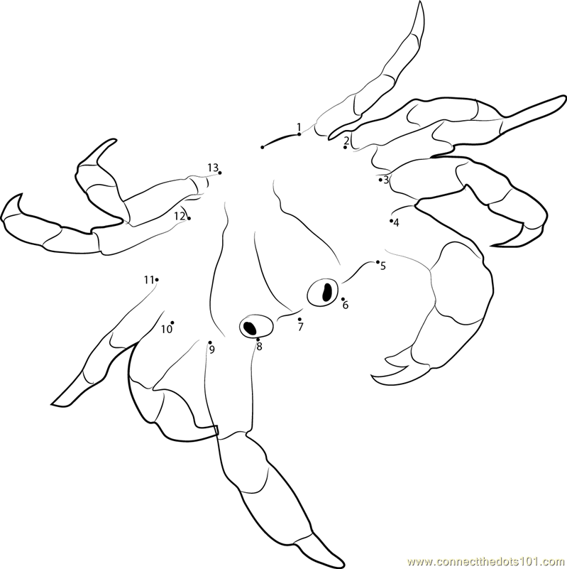 Land Crab dot to dot printable