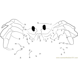 Ghost Crab Reduced Dot to Dot Worksheet