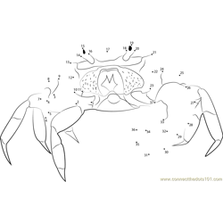 Halloween Crab Dot to Dot Worksheet