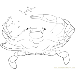 Maryland Crabs Dot to Dot Worksheet