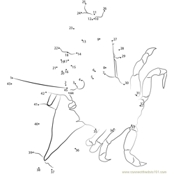 Masked Crab Dot to Dot Worksheet