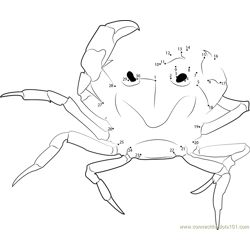 Purple Crab Dot to Dot Worksheet