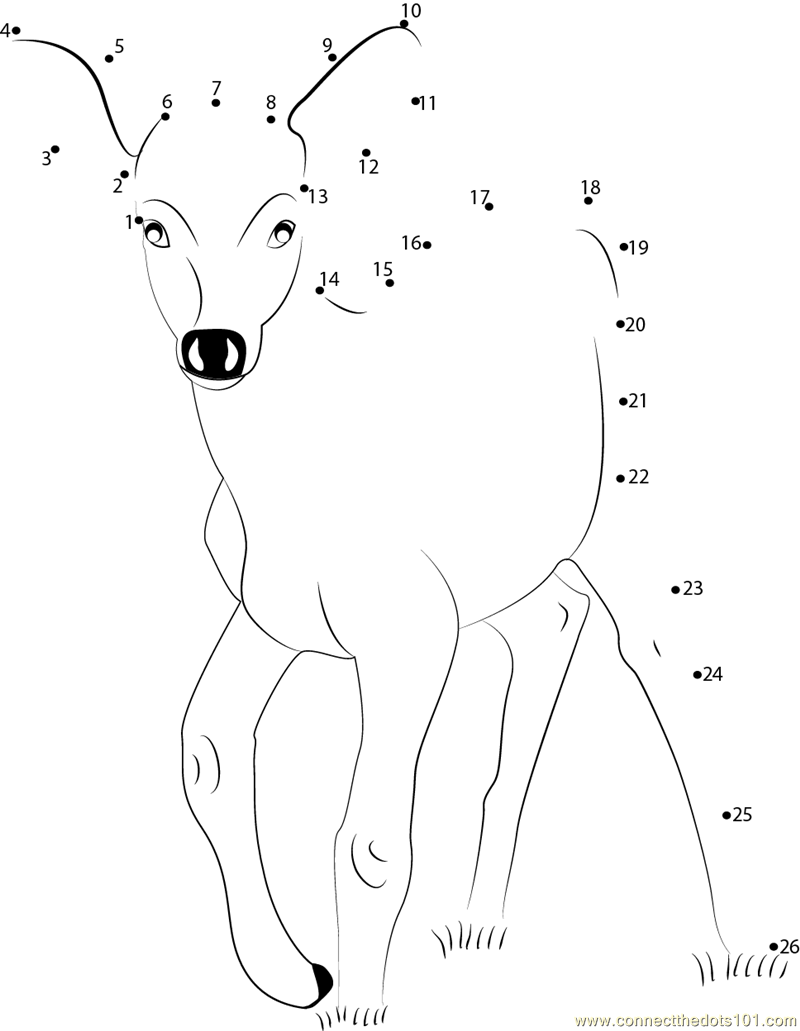 Deer Baby Dot To Dot Printable Worksheet Connect The Dots