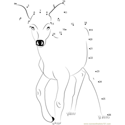 Deer Baby Dot to Dot Worksheet