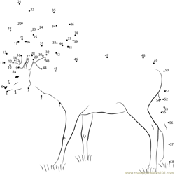 Deer Standing on Grass Dot to Dot Worksheet