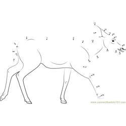 Mule Deer Dot to Dot Worksheet