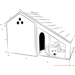 Bunk Dog House