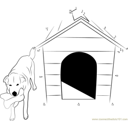 Pet Friendly Dog House
