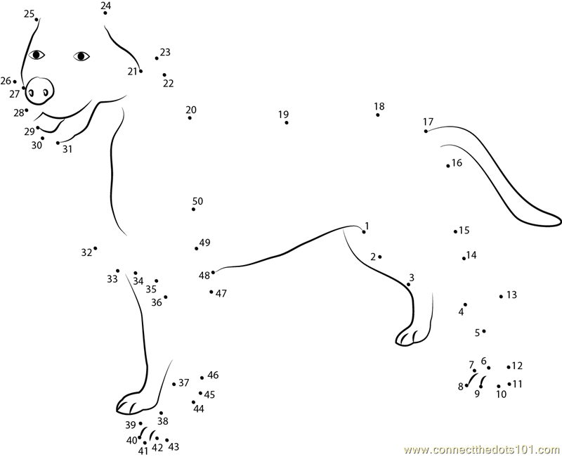 Greater Swiss Mountain Dog Dot To Dot Printable Worksheet