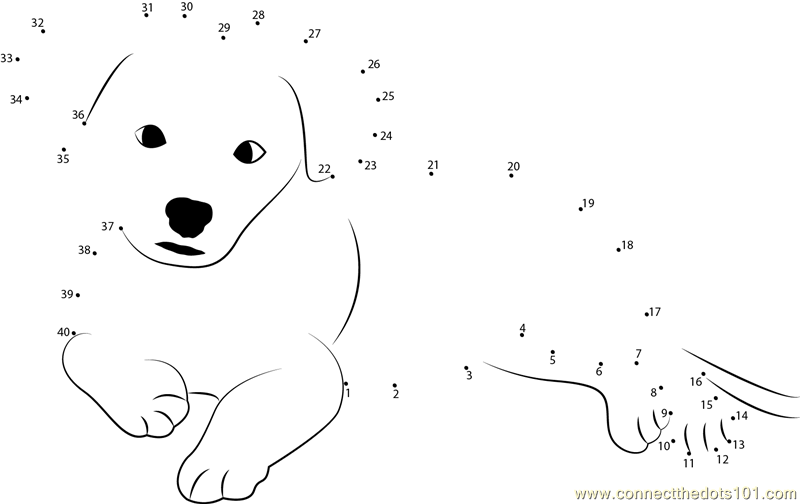 Nice Puppy Dot To Dot Printable Worksheet
