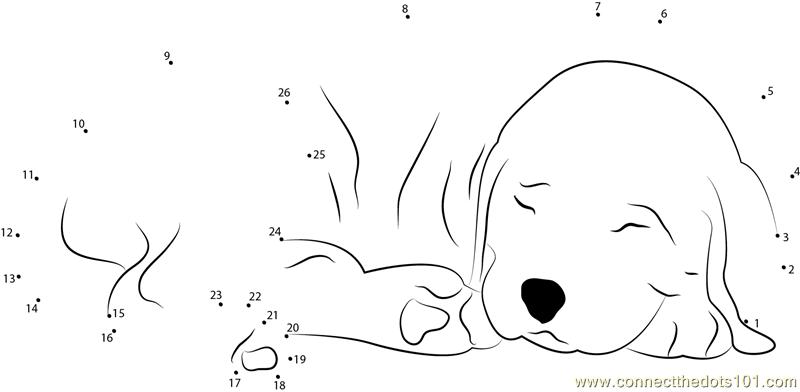 Sleeping Dog dot to dot printable