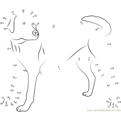 Labrador Looking Dot to Dot Worksheet