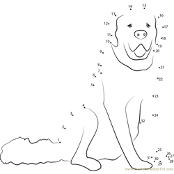 White Dog Dot to Dot Worksheet