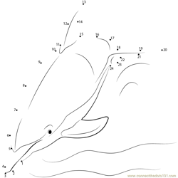 Casual Swim Dolphin Dot to Dot Worksheet
