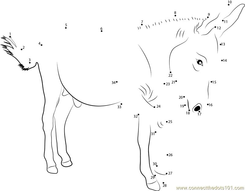 A Male Donkey Dot To Dot Printable Worksheet