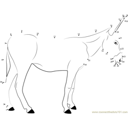 European Donkeys Dot to Dot Worksheet