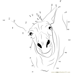 Funny Donkey Dot to Dot Worksheet