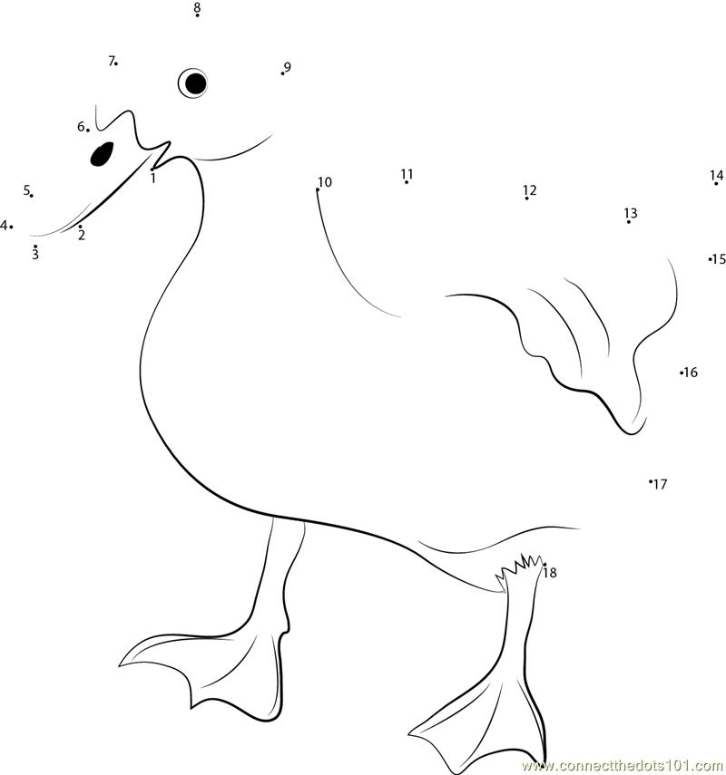 7199 Pet Duck Behavior Dot To Dot on Superheroes Worksheets For Kids