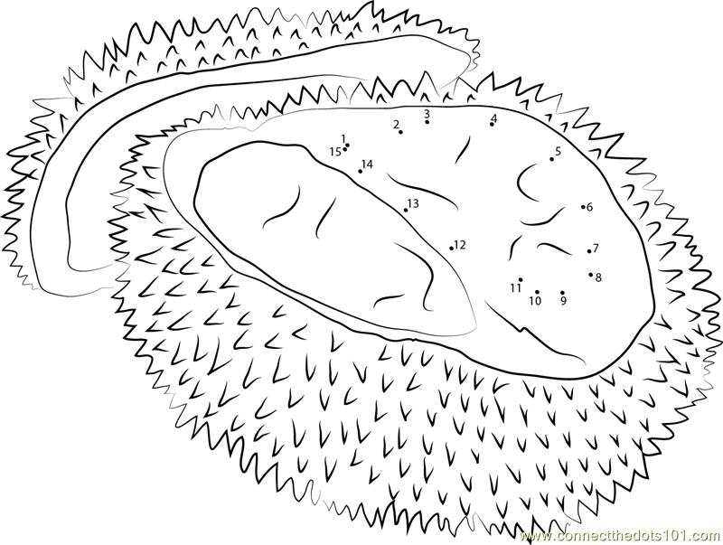 Singapore Durian Dot To Dot Printable Worksheet
