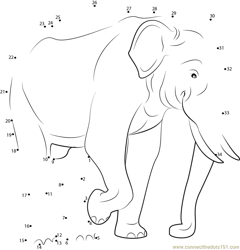 Elephant Dot To Dot Worksheet : Indian elephant dot to printable worksheet connect