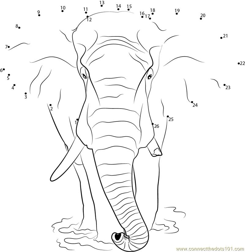Elephant Dot To Dot Worksheet : Loxodonta africana elephant dot to printable worksheet