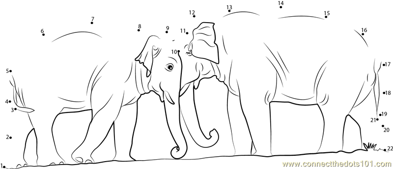 Elephant Dot To Dot Worksheet : Two elephants dot to printable worksheet connect the