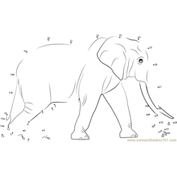 Sri Lankan Elephant Dot to Dot Worksheet