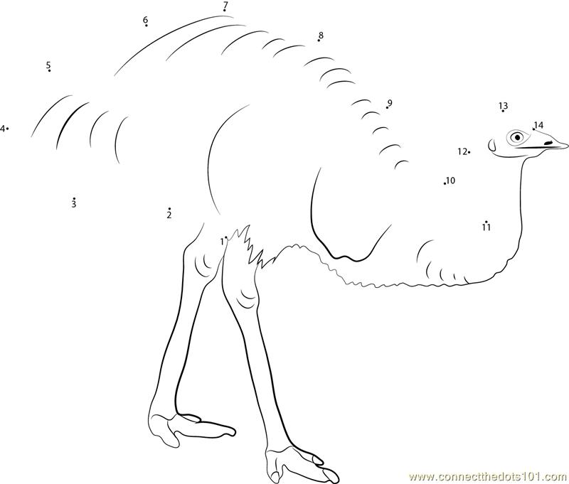 emu bird in forest dot to dot printable worksheet