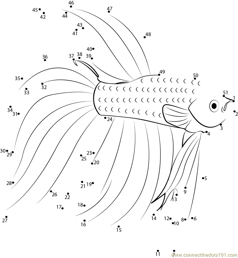 Fish Connect the Dots Worksheets Printable for Kids – Fish Worksheets