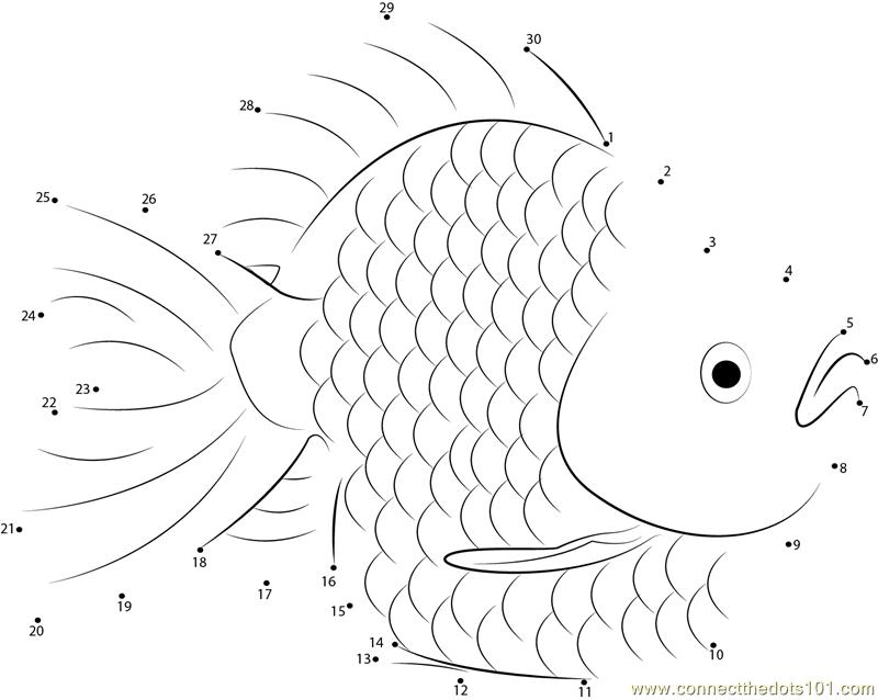 Gold Fish Dot To Dot Printable Worksheet