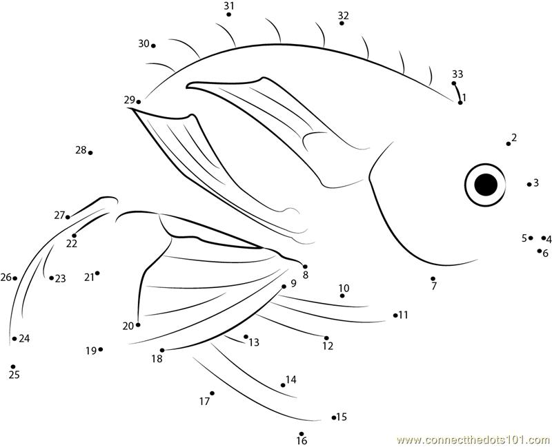 Marina Fish Dot To Dot Printable Worksheet