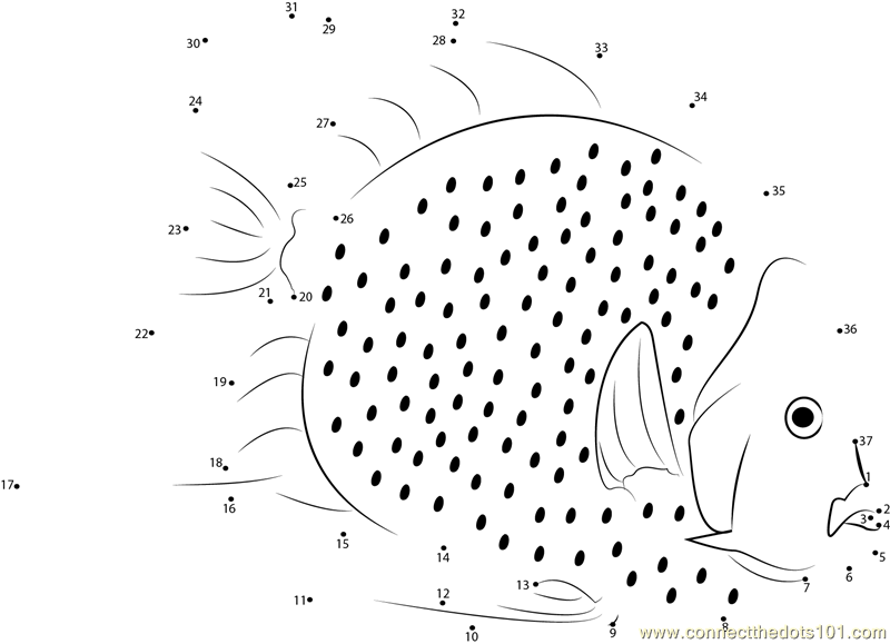 White Fish Dot To Dot Printable Worksheet