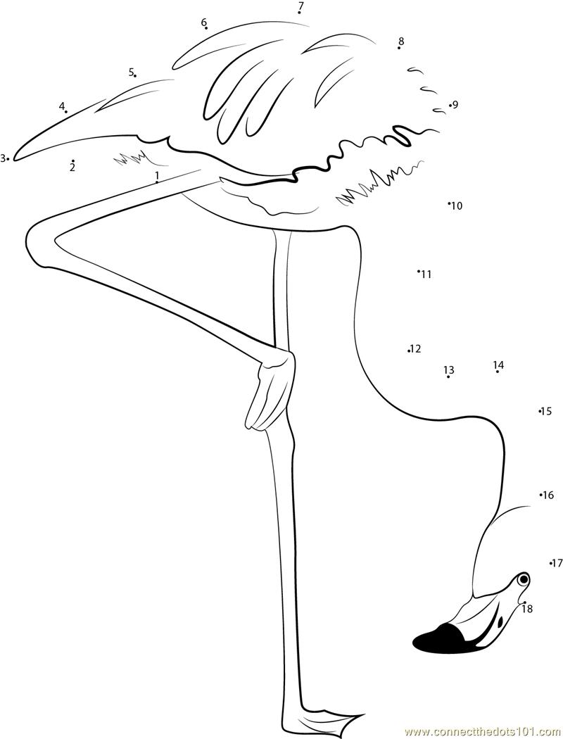 ... Flamingo Take Food dot to dot printable worksheet - Connect The Dots