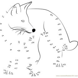 Angry Fox Dot to Dot Worksheet