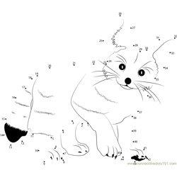 Fennec Fox Dot to Dot Worksheet