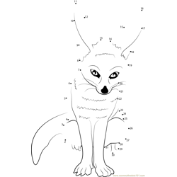 Fox Baby Dot to Dot Worksheet