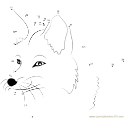 Fox Face Dot to Dot Worksheet