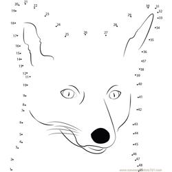 Sweet Face Of Fox Dot to Dot Worksheet