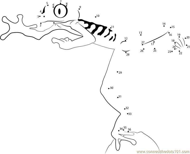 Red Eyed Tree Frog Jump dot to dot printable worksheet ...