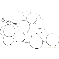 Delicious Grapes Dot to Dot Worksheet