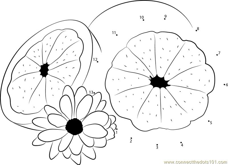 Grapefruit With Flower Dot To Dot Printable Worksheet