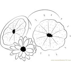 Grapefruit with Flower Dot to Dot Worksheet