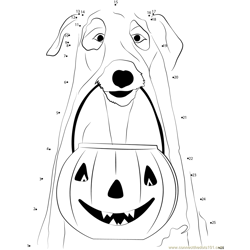 Dogs Jack Lantern Pumpkins Ghost
