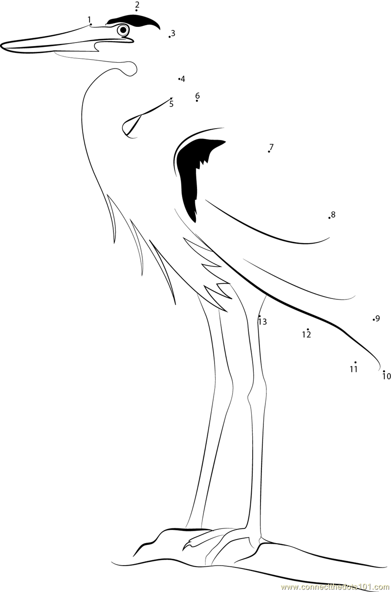 Great blue heron dot to dot printable worksheet connect for Great blue heron coloring page